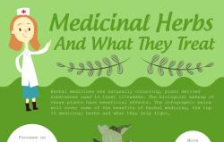 The Benefits of Herbal Medicine